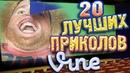 Лучшие Приколы Vine! ВЫПУСК 32 17