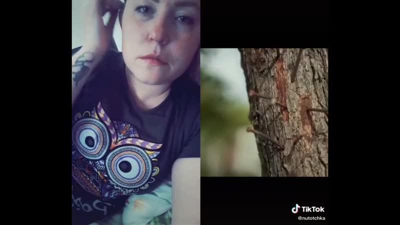 VIDEO-2020-06-02-08-26-58.mp4