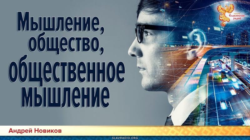 Мышление общество общественное мышление Андрей Новиков YouTube