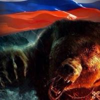 Фотография профиля Бори Волгина ВКонтакте