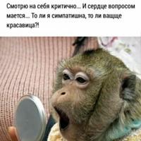 Фото Татьяны Сергеевной ВКонтакте