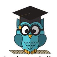 Логотип Order Skills: школа IT-анализа