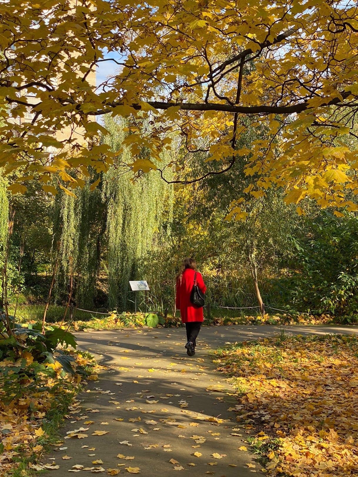 Аптекарский огород — самый старый ботанический сад в России, основанный Петром I в 1706 году.
