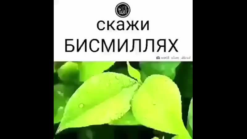 Facebook_1592331066846.mp4