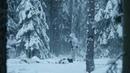 Военный фильм! С 1 по 4 серии! Шпионы, Снайперы, Штурмовики Военная разведка Северный фронт.