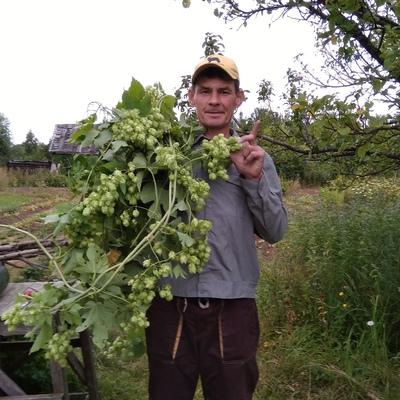 Александр, 50, Chaykovskiy