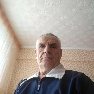 Viktor, 68, Zelenogorsk
