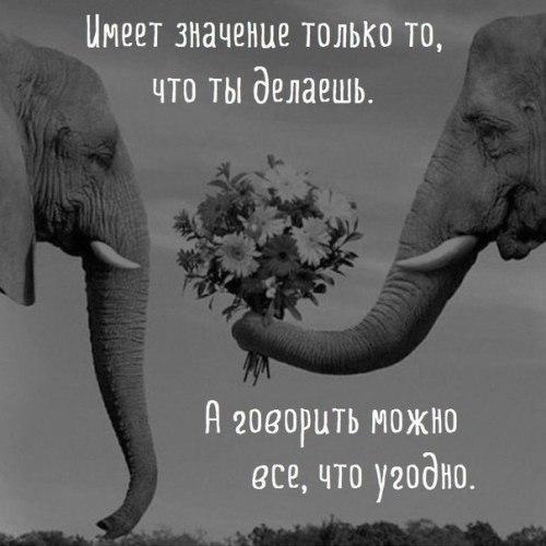 Елена Жидова | Нижний Новгород