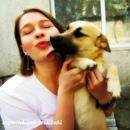 Даже если у вашей собаки нет золотых медалей, она имеет пожизненный титул: любимая!